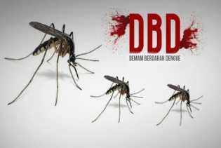 Ginda Ajak Masyarakat Berantas Sarang Nyamuk Untuk Mecegah Ancaman DBD di Tengah Pandemi Covid-19