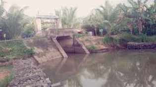 Pemkab Rohil Akan Bangun Embung Banjir