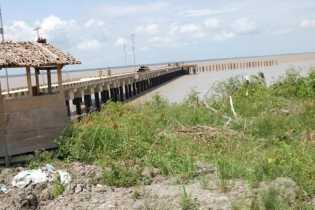 Bupati Suyatno Tinjau Pembangunan Pelabuhan Internasional Rohil