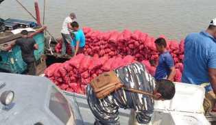 Dari Malaysia, 8 Ton Bawang Merah di Gerebek di Rohil